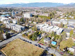 Photo 10: 12060 EDGE Street in Maple Ridge: East Central Duplex for sale : MLS®# R2535359