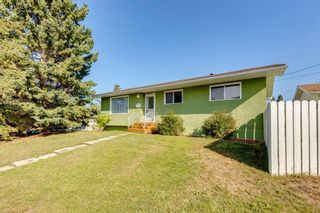 Photo 38: 302 Whitney Crescent SE in Calgary: Willow Park Detached for sale : MLS®# A1146432