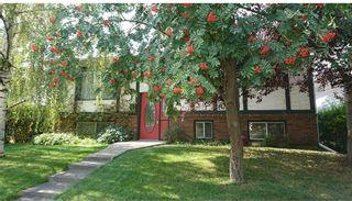 Photo 2: 1715 58 Street NE in Calgary: Pineridge Detached for sale : MLS®# A1140401