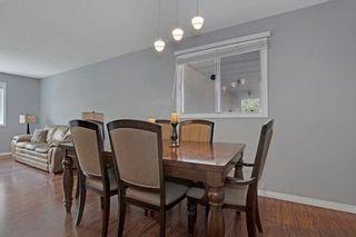 Photo 16: 51 ALPINE Boulevard: St. Albert House for sale : MLS®# E4247886