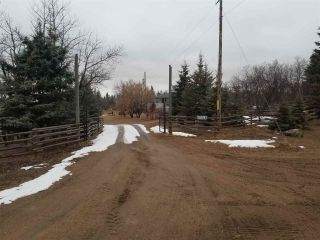Photo 15: 57518 RGE RD 233: Rural Sturgeon County House for sale : MLS®# E4235337