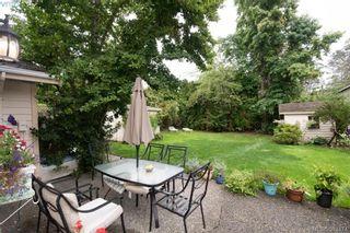 Photo 6: 4019 Malton Ave in VICTORIA: SE Mt Doug House for sale (Saanich East)  : MLS®# 770733