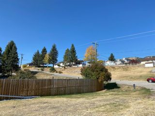 Photo 5: 8330 18 Avenue in Coleman: NONE Land for sale : MLS®# A1084355