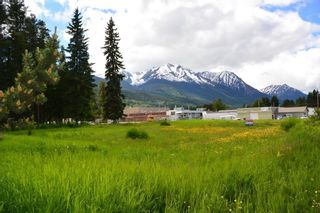 Photo 7: LOT 4-7 W 16 Highway in Smithers: Smithers - Town Land Commercial for sale (Smithers And Area (Zone 54))  : MLS®# C8038974
