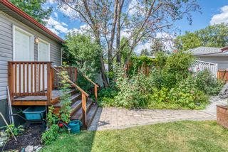 Photo 41: 2907 13 Avenue NW in Calgary: St Andrews Heights Detached for sale : MLS®# A1137811