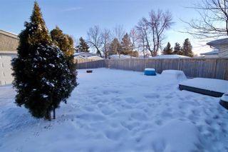 Photo 37: 19 Malden Close in Winnipeg: Maples Residential for sale (4H)  : MLS®# 202101865