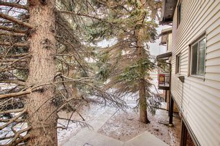 Photo 37: 64 3705 Fonda Way SE in Calgary: Forest Heights Apartment for sale : MLS®# A1065357