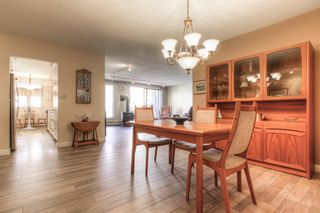 Photo 12: 301 1229 Cameron Avenue SW in Calgary: Lower Mount Royal Apartment for sale : MLS®# A1095141