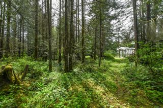 Photo 53: 3534 Royston Rd in : CV Courtenay South House for sale (Comox Valley)  : MLS®# 875936