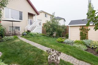 Photo 33: 172 COPPERFIELD Rise SE in Calgary: Copperfield Detached for sale : MLS®# C4201134