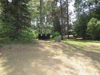 Photo 22: William Acreage in Nipawin: Residential for sale (Nipawin Rm No. 487)  : MLS®# SK839684