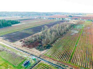 Photo 11: 3762 - 3792 176 Street in Surrey: Serpentine Land for sale (Cloverdale)  : MLS®# R2532600