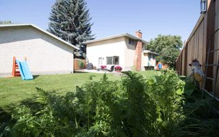 Photo 44: 3509 105 Street Street NW in Edmonton: Zone 16 House for sale : MLS®# E4239908
