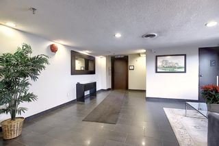 Photo 19: 806 320 Meredith Road NE in Calgary: Crescent Heights Apartment for sale : MLS®# A1106312