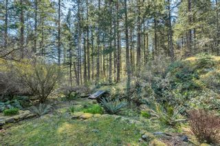 Photo 68: 855 Hope Spring Rd in : Isl Quadra Island House for sale (Islands)  : MLS®# 873398