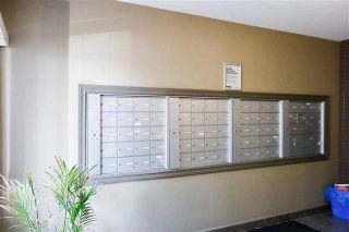 Photo 4: 302 4407 23 Street NW in Edmonton: Zone 30 Condo for sale : MLS®# E4240859