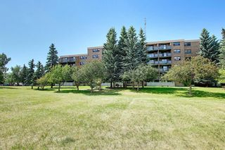 Photo 28: 104 30 Mchugh Court NE in Calgary: Mayland Heights Apartment for sale : MLS®# A1123350