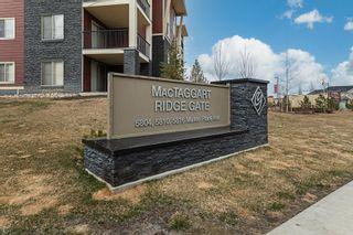 Photo 2: 306 5810 MULLEN Place in Edmonton: Zone 14 Condo for sale : MLS®# E4265382