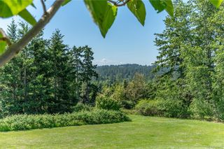 Photo 49: 3285 Livesay Rd in Central Saanich: CS Martindale House for sale : MLS®# 841868