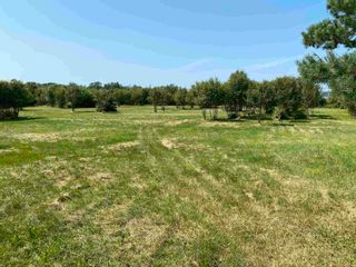Photo 17: Shore Road in Merigomish: 108-Rural Pictou County Vacant Land for sale (Northern Region)  : MLS®# 202120405