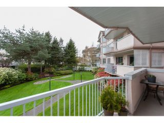 """Photo 19: 102 5375 205 Street in Langley: Langley City Condo for sale in """"GLENMONT PARK"""" : MLS®# R2053882"""