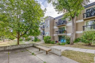 Photo 22: 309 315 HERITAGE Drive SE in Calgary: Acadia Apartment for sale : MLS®# A1029612