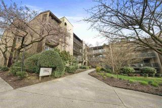 "Photo 1: 314 9867 MANCHESTER Drive in Burnaby: Cariboo Condo for sale in ""Barclay Woods"" (Burnaby North)  : MLS®# R2561563"