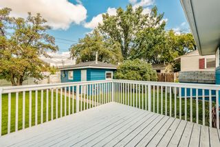 Photo 39: 78 Franklin Drive in Calgary: Fairview Detached for sale : MLS®# A1142495