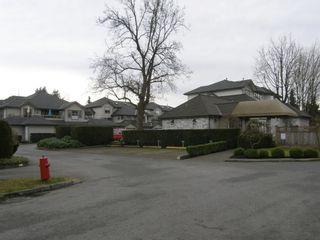 "Photo 3: 6 19160 119TH AVENUE in ""WINDSOR OAKS"": Home for sale : MLS®# V1042277"