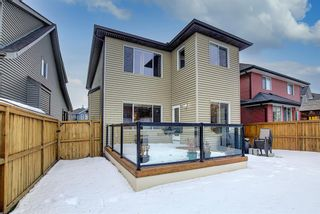 Photo 32: 54 Evanspark Terrace NW in Calgary: Evanston Residential for sale : MLS®# A1060196
