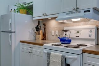 Photo 3: 460 519 17 Avenue SW in Calgary: Cliff Bungalow Apartment for sale : MLS®# A1053452
