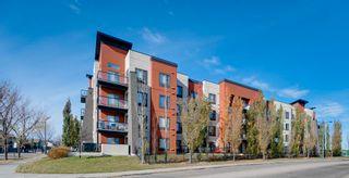 Photo 30: 243 308 AMBLESIDE Link in Edmonton: Zone 56 Condo for sale : MLS®# E4260650