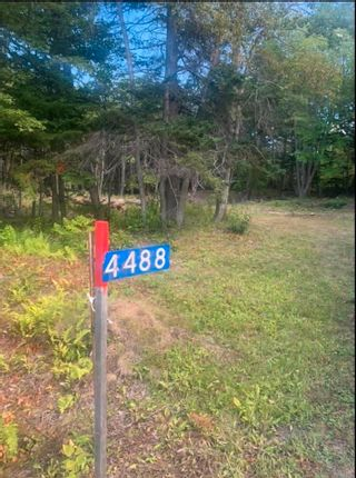 Photo 4: 4488 Little Harbour Road in Little Harbour: 108-Rural Pictou County Vacant Land for sale (Northern Region)  : MLS®# 202118097