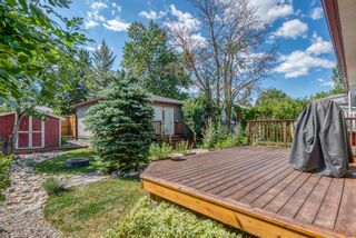 Photo 35: 2907 13 Avenue NW in Calgary: St Andrews Heights Detached for sale : MLS®# A1137811
