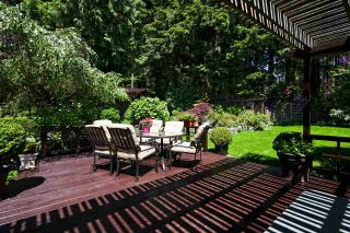 Photo 33: 1740 CASCADE COURT in North Vancouver: Indian River House for sale : MLS®# R2459589