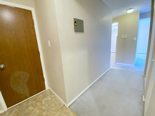 Photo 6: 305 10330 113 Street in Edmonton: Zone 12 Condo for sale : MLS®# E4250079