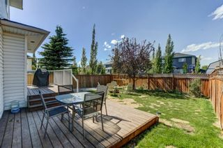Photo 27: 55 Thornbird Way SE: Airdrie Detached for sale : MLS®# A1114077