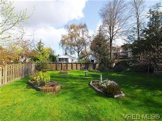 Photo 19: 2034 Haultain St in VICTORIA: OB Henderson House for sale (Oak Bay)  : MLS®# 568939