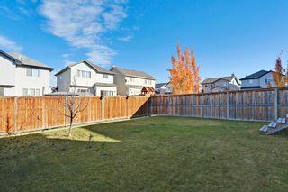 Photo 29: 145 Cranston Way SE in Calgary: House for sale : MLS®# C3640980