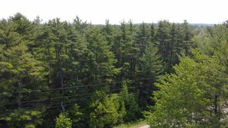 Photo 4: Lot Highway 203 in Shelburne: 407-Shelburne County Vacant Land for sale (South Shore)  : MLS®# 202114248