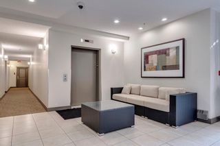 Photo 28: 27 27 INGLEWOOD Park SE in Calgary: Inglewood Apartment for sale : MLS®# A1076634