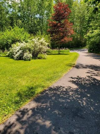 Photo 19: 305 Black Point Road in Black Point: 108-Rural Pictou County Residential for sale (Northern Region)  : MLS®# 202114215