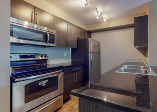 Photo 16: 204 2715 12 Avenue SE in Calgary: Albert Park/Radisson Heights Apartment for sale : MLS®# A1060528