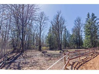 """Photo 38: 30886 DEWDNEY TRUNK Road in Mission: Stave Falls House for sale in """"Stave Falls"""" : MLS®# R2564270"""