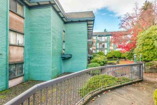 "Photo 21: 204 5450 EMPIRE Drive in Burnaby: Capitol Hill BN Condo for sale in ""EMPIRE PLACE"" (Burnaby North)  : MLS®# R2517725"
