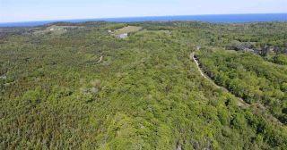 Photo 1: LOT Highway 217 in Centreville: 401-Digby County Vacant Land for sale (Annapolis Valley)  : MLS®# 202012827