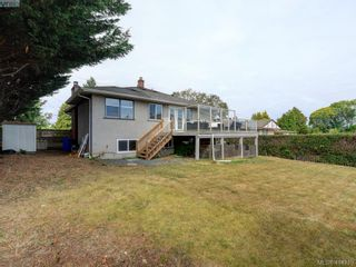 Photo 23: 4105 Glanford Ave in VICTORIA: SW Glanford House for sale (Saanich West)  : MLS®# 821592