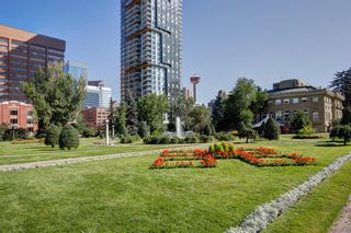 Photo 29: 6 313 13 Avenue SW in Calgary: Beltline Apartment for sale : MLS®# A1141829