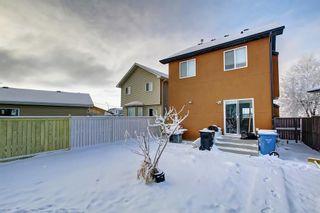 Photo 39: 239 SADDLEMEAD Road NE in Calgary: Saddle Ridge Detached for sale : MLS®# C4279947