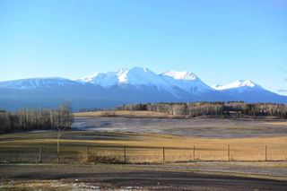 """Photo 3: 1530 BILLETER Road in Smithers: Smithers - Rural House for sale in """"DRIFTWOOD"""" (Smithers And Area (Zone 54))  : MLS®# R2328657"""